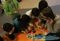 Sociale - Centro educativo (Foto internet)