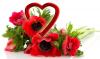 Attualità - Fiori e piante per San Valentino (Foto internet)