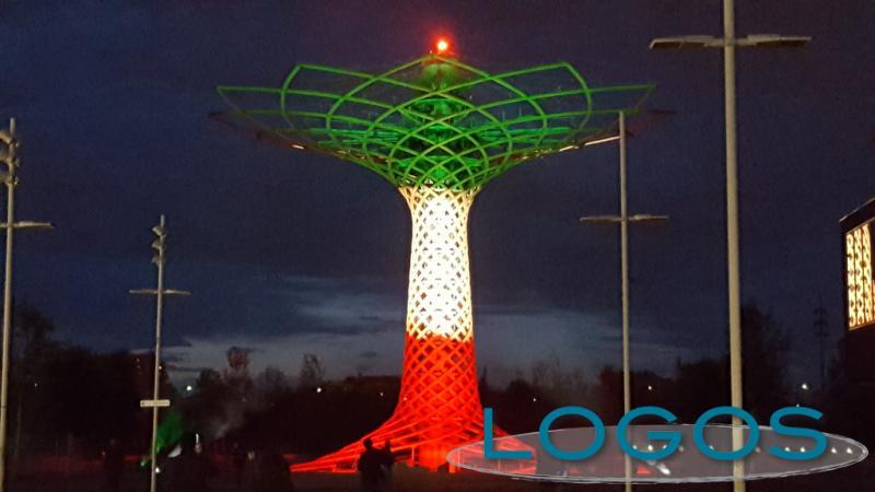 Expo - Albero della Vita tricolore