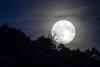 Attualità - Super luna (Foto internet)