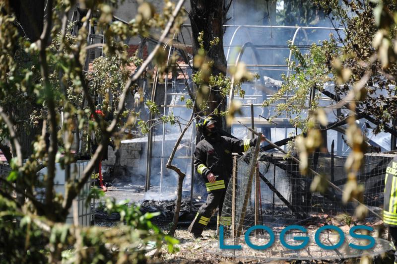 Arluno - A fuoco campo di pioppi