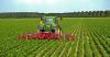 Territorio - Aziende agricole (Foto internet)