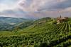 Territorio - Oltrepò Pavese (Foto internet)