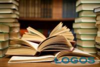 Libri - Biblioteca (Foto internet)