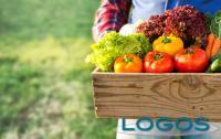 Ambiente - Agroalimentare (Foto internet)