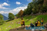 Eventi - Musica in quota 2020 all'Alpe Solcio