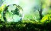 Ambiente - Biodiversità (Foto internet)