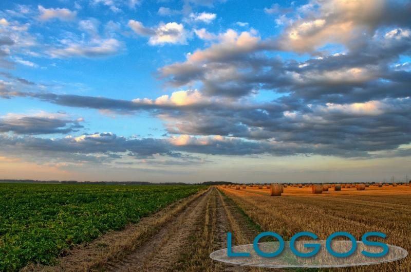 Territorio - Lombardia agricola (Foto internet)