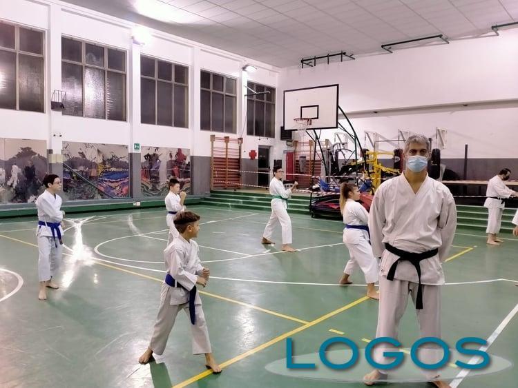 Magenta - ASD Fukai karate