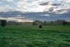 Territorio - Campi con nebbiolina (foto di Toby Vignati)