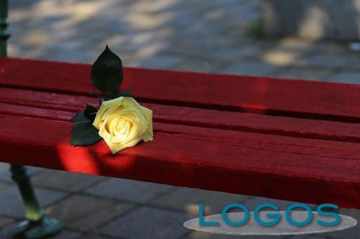 Sociale - Giornata contro la violenza sulle donne (Foto internet)