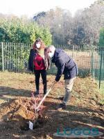 Cuggiono - Rosalba Mangialardi e Giovanni Cucchetti piantano alcune piante