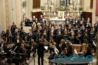 Musica - Ensemble Amadeus
