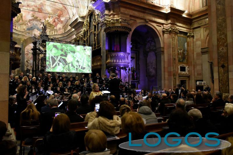 Busto Arsizio - Coro Amadeus, concerto online