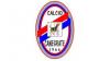 Sport - Canegrate Calcio (Foto internet)