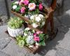 Attualità - Decorazione floreale (Foto internet)