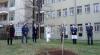 Busto Arsizio - Paulownia in dono all'ospedale