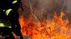Cronaca - Incendio (Foto internet)