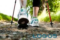 Sport - Nordic Walking (Foto internet)