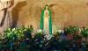 Attualità - Vergine della Rivelazione (Foto internet)