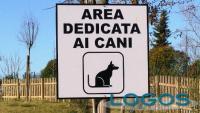 Attualità - Area cani (Foto internet)