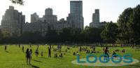 Ambiente - Verde urbano (Foto internet)