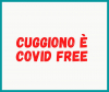 Cuggiono - Cuggiono 'Covid free'