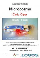 Busto Garolfo / Eventi - 'Microcosmo'