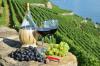 Attualità - Turismo vino (Foto internet)
