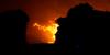 Attualità - Incendio (Foto internet)