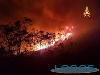 Attualità - Incendi Sicilia (Foto internet)