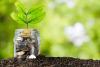 Ambiente / Creditizio - Investimenti agricoltura (Foto internet)