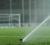 Generica - Irrigazione campo da calcio (foto internet)