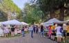 Canegrate / Eventi - Festa della associazioni (Foto internet)