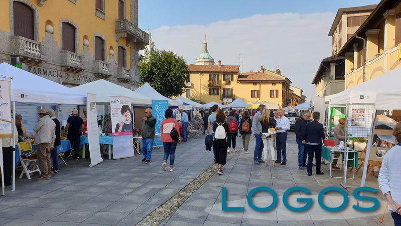 Eventi - Festa associazioni (Foto internet)