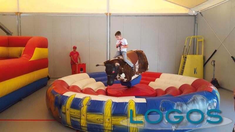 Eventi - Il toro meccanico