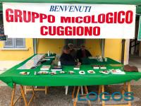 Cuggiono - Gruppo micologico