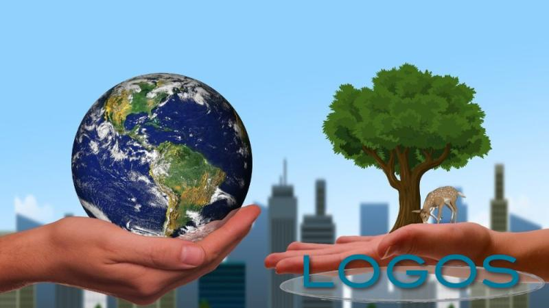 Ambiente - Ecologia (Foto internet)