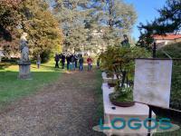 Castano / Eventi - Bonsai in Villa Rusconi