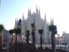 Attualità - Le palme in piazza Duomo a Milano