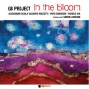 Musica - 'In the Bloom'